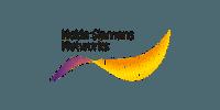 Nokia Simens Logo